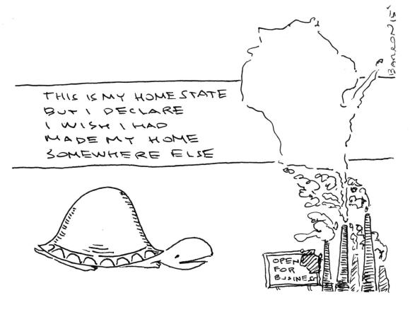 WisconsinTurtle